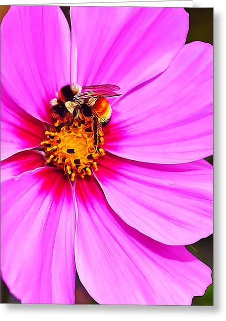 Digital Manipulation Art Greeting Cards - Bee on Pink Greeting Card by Bill Caldwell -        ABeautifulSky Photography