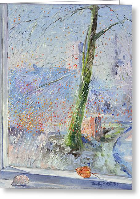 Beech Tree And Haw Frost Greeting Card by Timothy Easton