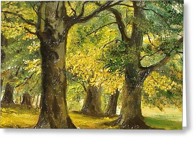 Landscape Framed Prints Greeting Cards - Beeches in the park Greeting Card by Sorin Apostolescu