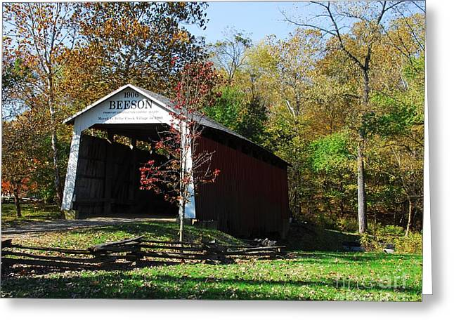 Indiana Landscapes Greeting Cards - Beeson Covered Bridge 2 Greeting Card by Mel Steinhauer