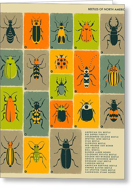 Childrens Poster Greeting Cards - Beetles Of North America Greeting Card by Jazzberry Blue