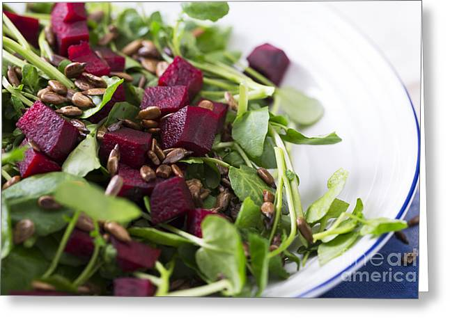 Watercress Greeting Cards - Beetroot Salad Greeting Card by Charlotte Lake