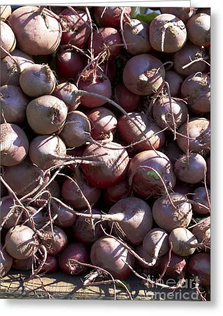 Farm Stand Greeting Cards - Beets Greeting Card by Tony Cordoza