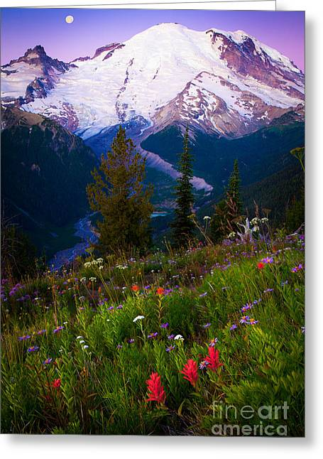 Scenery Greeting Cards - Before Dawn at Mount Rainier Greeting Card by Inge Johnsson