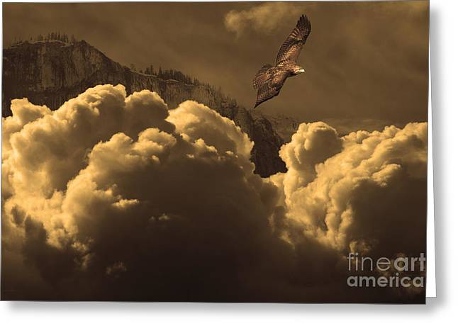 Before Memory . I Have Soared With The Hawk Greeting Card by Wingsdomain Art and Photography