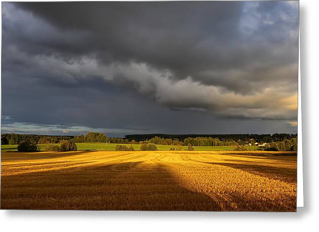 Lanscape Pyrography Greeting Cards - Before rain and storm Greeting Card by Basri Ahmedov