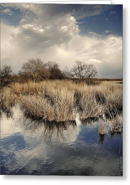 Mancha Greeting Cards - Before the big storm Retro Greeting Card by Guido Montanes Castillo