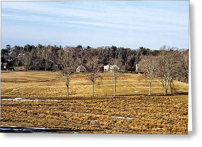 Farm Stand Greeting Cards - Before The Greening Greeting Card by Constantine Gregory