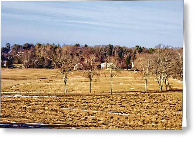 Farm Stand Greeting Cards - Before The Greening Photo Art Greeting Card by Constantine Gregory