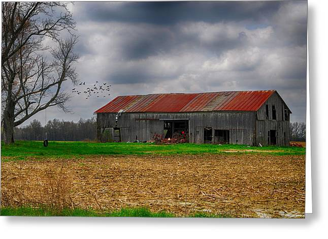 Storm Prints Digital Greeting Cards - Before the Storm Greeting Card by Mary Timman