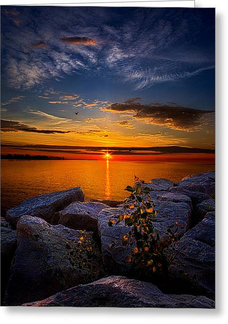 Red Photographs Greeting Cards - Before You Woke Greeting Card by Phil Koch