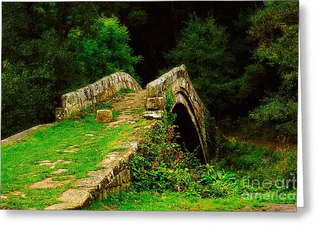 Packhorse Greeting Cards - Beggars Bridge in Glaisdale North Yorkshire Greeting Card by Louise Heusinkveld