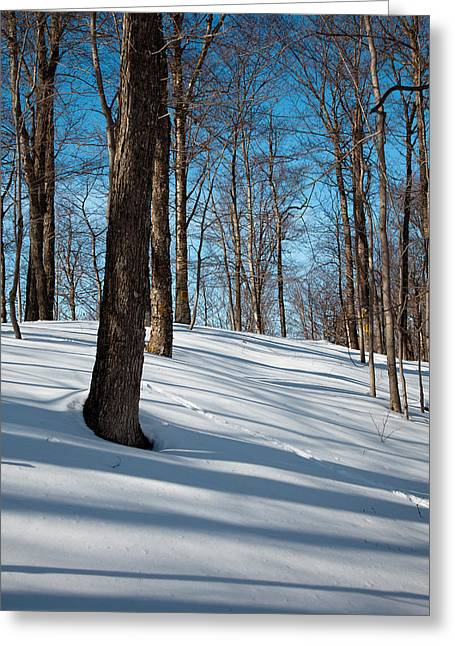 Chairlift Greeting Cards - Behind McCauley Mountain Greeting Card by David Patterson