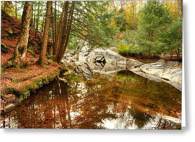 Buttermilk Falls Greeting Cards - Behind the Falls Greeting Card by Dennis Clark