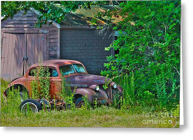 Rusted Cars Greeting Cards - Behind the old barn Greeting Card by Claudia Mottram
