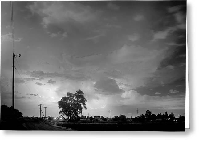 Storm Prints Greeting Cards - Behind The Tree in Black and White Greeting Card by James BO  Insogna