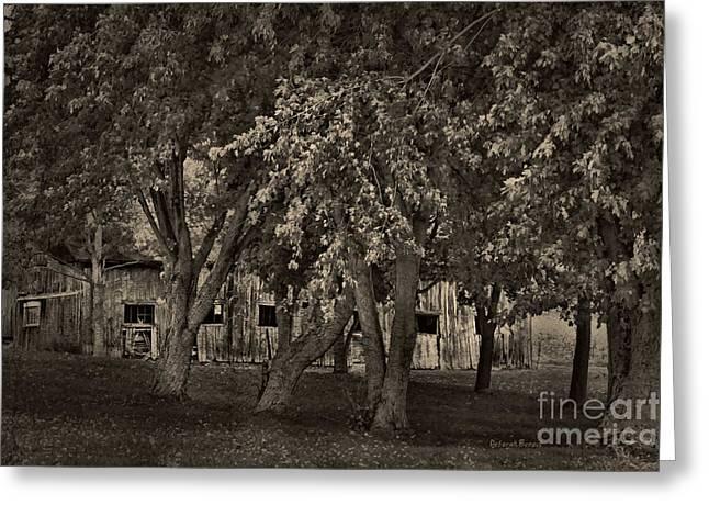 Old Barns Mixed Media Greeting Cards - Behind The Trees Greeting Card by Deborah Benoit