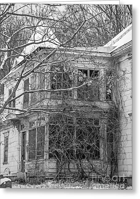 Old Maine Houses Greeting Cards - Being Taken Over Greeting Card by Alana Ranney