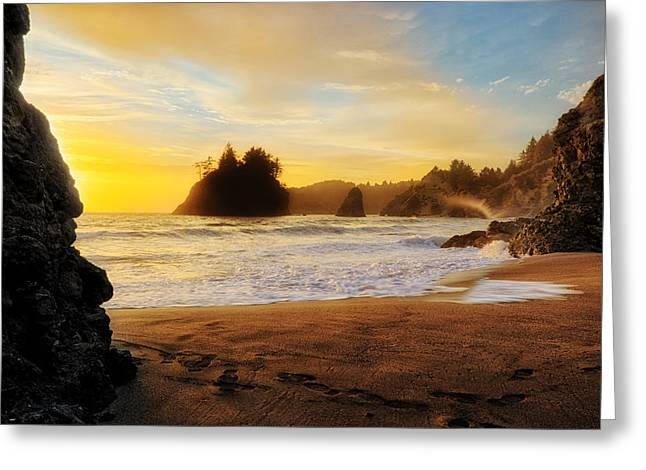 Trinidad Beach Greeting Cards - Being There Greeting Card by James Heckt