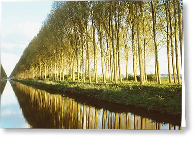 Belgium, Tree Lined Waterway Greeting Card by Panoramic Images