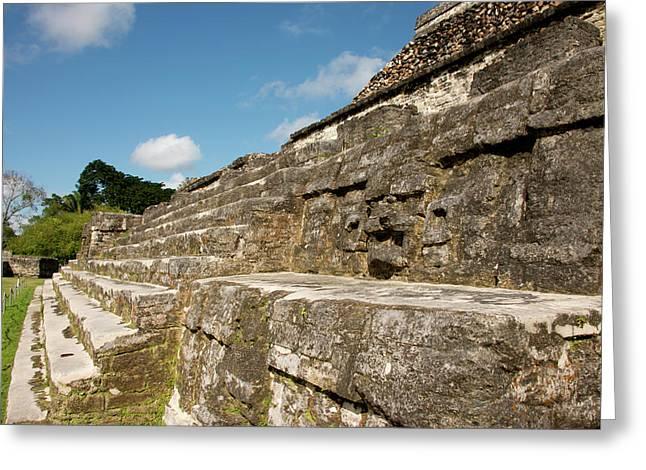 Belize, Altun Ha Greeting Card by Cindy Miller Hopkins