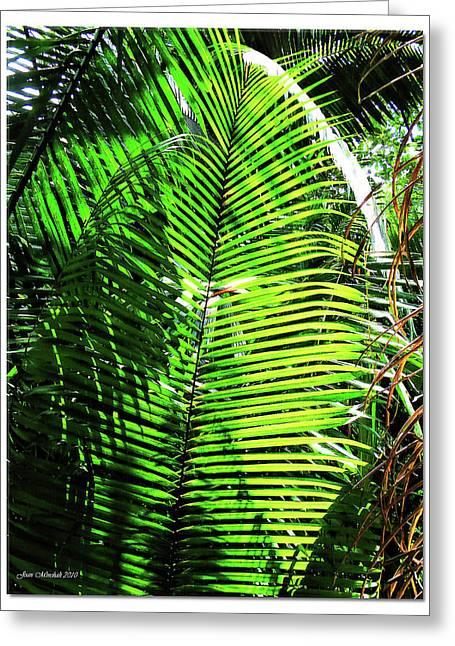 Biological Digital Art Greeting Cards - Belize Caracol Jungle Greeting Card by Joan  Minchak