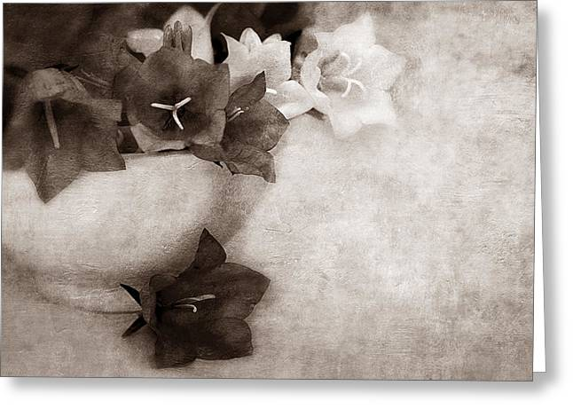 Close Focus Floral Greeting Cards - Bell Flowers In Sepia Greeting Card by Maria Angelica Maira