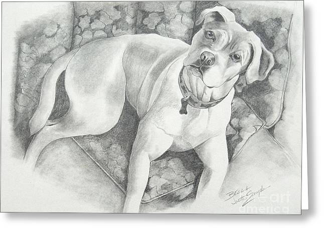 Boxer Drawings Greeting Cards - Bella My Pup Greeting Card by Joette Snyder