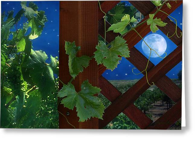 Italian Wine Greeting Cards - Bella Serra Greeting Card by Stephanie Laird