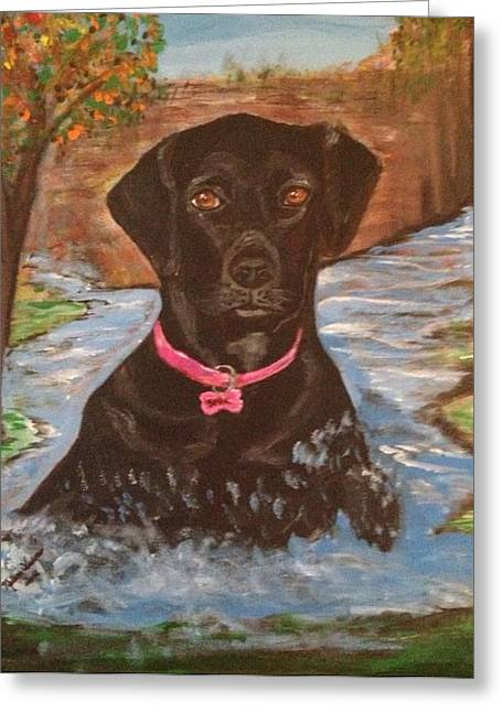 Indiana Autumn Paintings Greeting Cards - Bella Swimming Greeting Card by Melanie Wadman