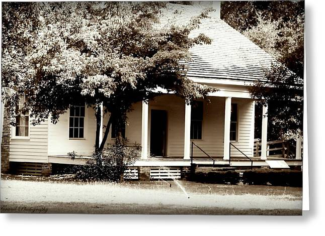 Catherine White Greeting Cards - Bellavue Plantation  Greeting Card by Debra Forand