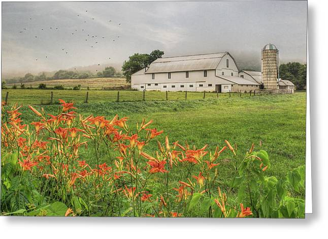 Barn Digital Greeting Cards - Belleville Morning Greeting Card by Lori Deiter
