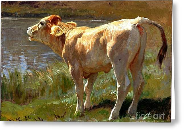 Swiss Paintings Greeting Cards - Bellowing Cow Greeting Card by Pg Reproductions
