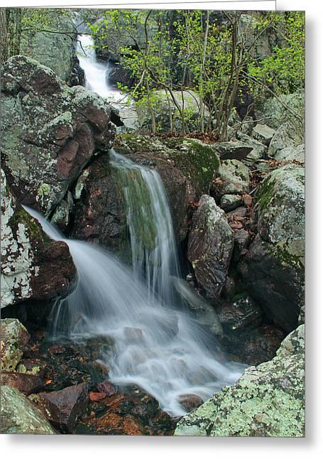 Taum Sauk Greeting Cards - Below Mina Sauk Falls 4 on Taum Sauk Mountain Greeting Card by Greg Matchick