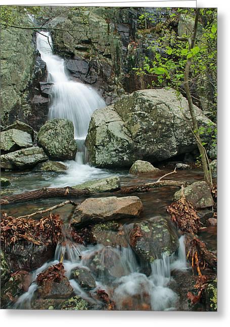 Taum Sauk Greeting Cards - Below Mina Sauk Falls On Taum Sauk Mountain 3 Greeting Card by Greg Matchick