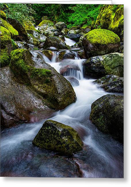 Creek Greeting Cards - Below Rainier Greeting Card by Chad Dutson