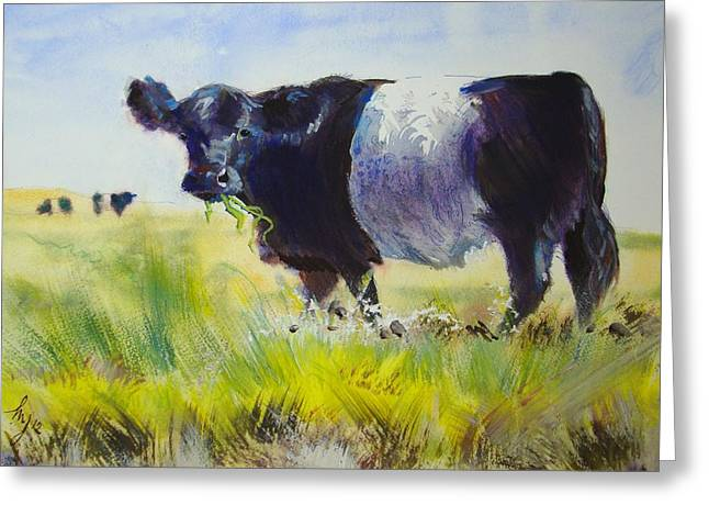Single Mixed Media Greeting Cards - Belted Galloway Cow Greeting Card by Mike Jory