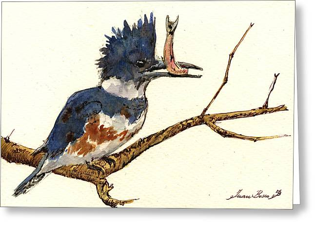 Belts Greeting Cards - Belted Kingfisher bird Greeting Card by Juan  Bosco