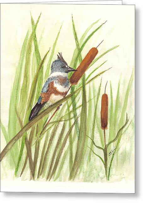 Belt Drawings Greeting Cards - Belted Kingfisher Greeting Card by Syl Lobato