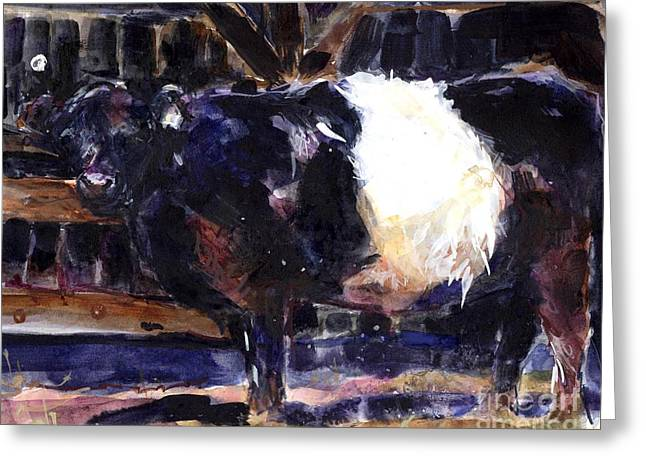 Belted Galloway Greeting Cards - Beltie Greeting Card by Molly Poole