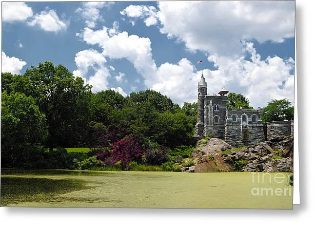 Algae Greeting Cards - Belvedere Castle Turtle Pond Central Park Greeting Card by Amy Cicconi
