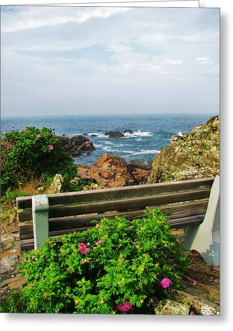 Spring In Maine Photographs Greeting Cards -  Marginal Way Greeting Card by Diane Valliere