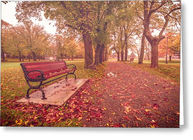 Autumn Photos Greeting Cards - Bench at the Park Greeting Card by Gord Follett