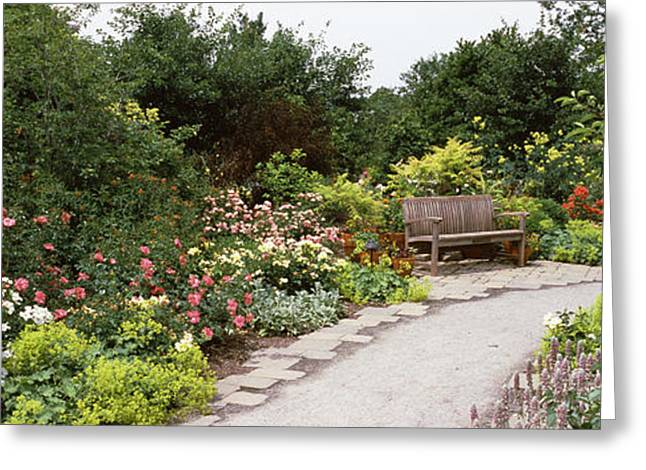 Botanical Greeting Cards - Bench In A Garden, Olbrich Botanical Greeting Card by Panoramic Images