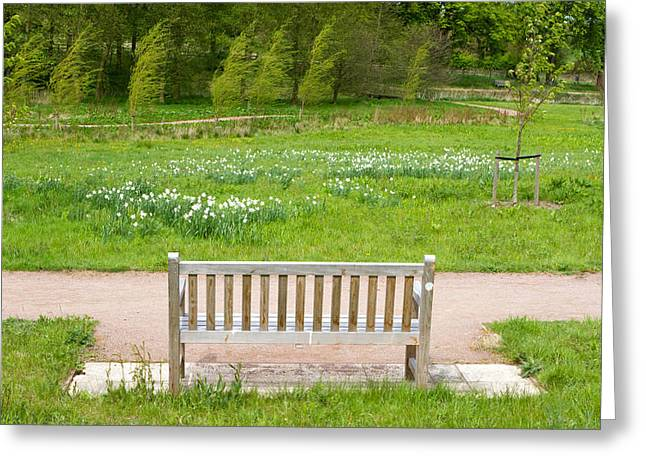 Human Image Greeting Cards - bench in an English Countryside scene Greeting Card by Fizzy Image