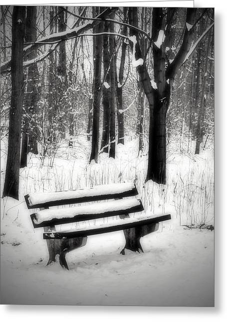 Bench Greeting Cards - Bench in Snow Greeting Card by Wim Lanclus
