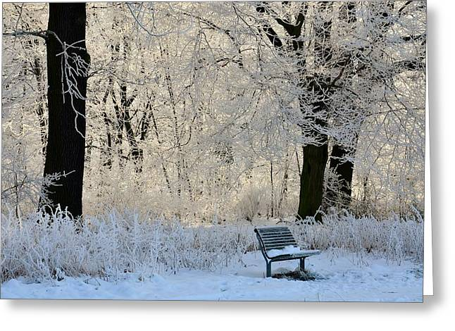 Desk Mixed Media Greeting Cards - Bench in the park Greeting Card by Gynt
