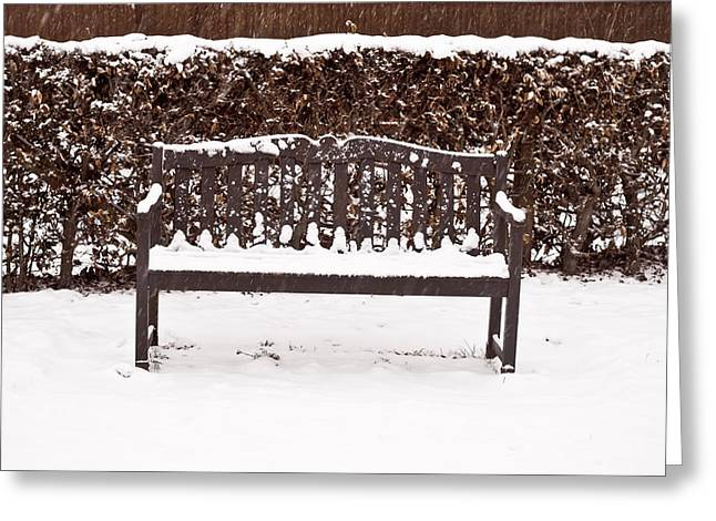 Winter Scenes Rural Scenes Greeting Cards - Bench in the snow Greeting Card by Tom Gowanlock