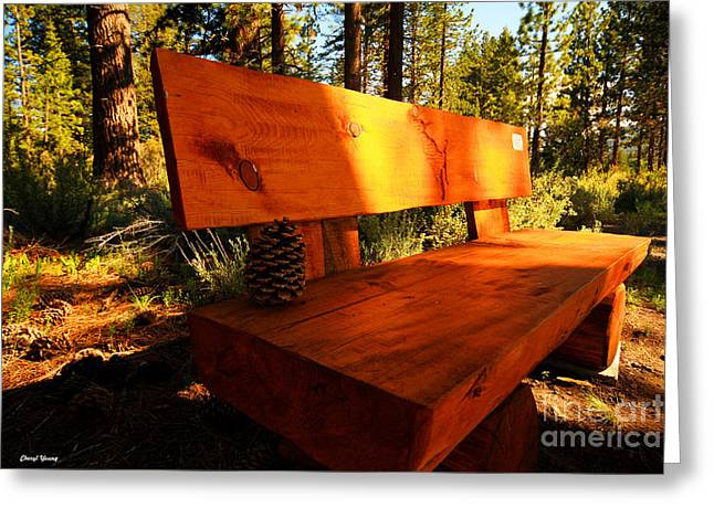 Reception Greeting Cards - Bench in the Woods Greeting Card by Cheryl Young