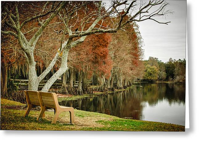 Bench With A View Greeting Card by Carolyn Marshall